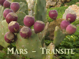 Webinar: Mars-Transite - Übungsabend