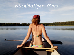 Webinar: Rückläufiger Mars - Fallbeispiele