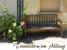 Webinar: Transite im Alltag
