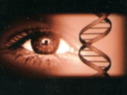 Webinar: Modul 1 Ausbildung Augendiagnose und visuelle Diagnostik Modul 1