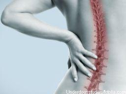 Webinar: Rücken-Inform - Schmerz weg