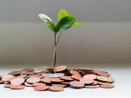 Webinar: Grundlagen des Investierens