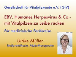 Webinar: EBV, Humanes Herpesvirus & Co - mit Vitalpilzen zu Leibe rücken