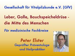 Webinar: Leber, Galle, Bauchspeicheldrüse - die Mitte des Menschen