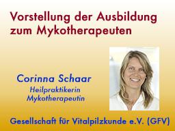 Webinar: Vorstellung der Ausbildung zum Mykotherapeuten