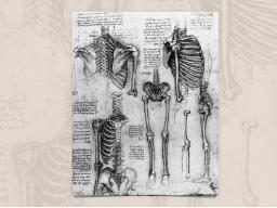 Webinar: Online-Seminar Prüfungswissen: Orthopädie mit Alexandra Geckeler