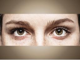 Online-Seminar Prüfungswissen: Auge mit Alexandra Geckeler