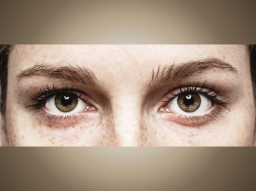 Webinar: Online-Seminar Prüfungswissen: Auge mit Alexandra Geckeler