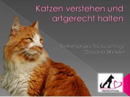 Webinar: Katzen verstehen und artgerecht halten.