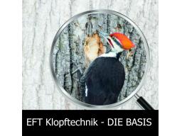 Webinar: EFT Klopftechnik zur Selbsthilfe - Die BASIS