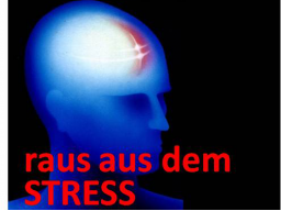 Webinar: raus aus dem STRESS
