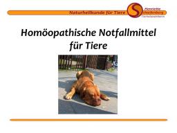 Webinar: Homöopathische Notfallmittel für Tiere
