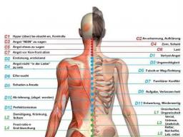 Webinar: Kontaktiere deinen besten Arzt - deinen Körper