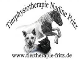 Webinar: Traumberuf Tierphysiotherapeut?