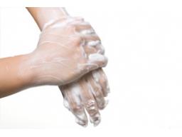 Webinar: Hygieneseminar