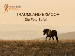 Webinar: Traumland Exmoor - Die Foto-Safari
