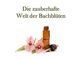 Webinar: Einführung in die zauberhafte Welt der Bachblüten