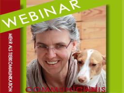 Webinar: Tierkommunikation - das Informationswebinar