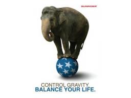 Webinar: Purzelnde Pfunde durch Balance - Mitmach-Workshop