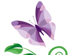 Webinar: Wissensvermittlung Barbara Blüten Aufbaustufe