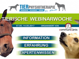 Webinar: Der Bandscheibenvorfall beim Hund (Dr. Kirsten Häusler)