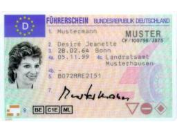 Webinar: Ablauf einer Führerschein Fahrprüfung Klasse B