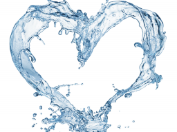 Webinar: Ist mineralfreies Wasser wirklich gesund?