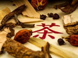 Webinar: Traditionelle Chinesische Arzneimitteltherapie für Tiere - Block 6