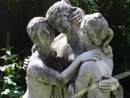 Webinar: Kräuter für die Phasen der Weiblichkeit