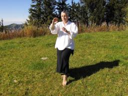 Webinar: Tai-Chi-GODO® continuo