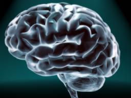 Webinar: Macht der Gedanken