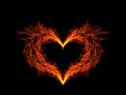 """Webinar: """"Mach aus Deinem Herzen keine Mördergrube!  Wunden heilen, wenn man sich um sie kümmert!"""""""