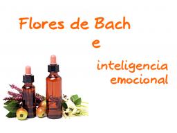 Webinar: Flores de Bach e Inteligencia Emocional