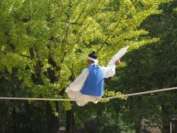 Webinar: Wie kommst du ins Gleichgewicht/Balance in deinem Leben
