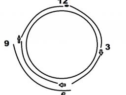 Webinar: Lerne den TTouch 5/4 Kreis