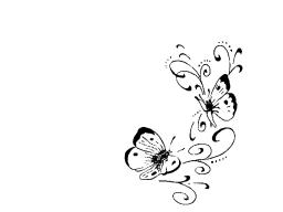 Webinar: Modul 1: Stress vs. Bewusstsein