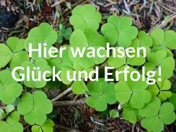 Webinar: Hier wachsen Glück und Erfolg!