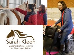 Webinar: Gesund Reiten - Das sollte jeder Reiter wissen!
