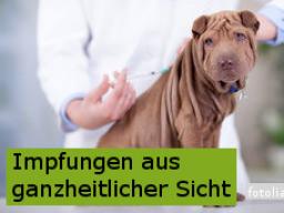Webinar: Impfungen für Hund & Katze aus ganzheitlicher Sicht
