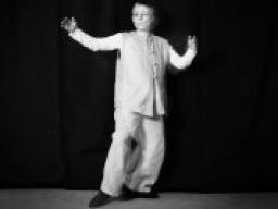Webinar: Tai-Chi-GODO® Teil 3