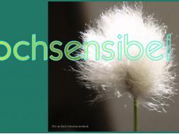 Webinar: Hochsensibilität Teil2