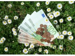 Webinar: Die eigene Beziehung zu Geld verbessern