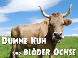 Webinar: Dumme Kuh und blöder Ochse