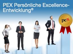 Webinar: Persönliche Excellence-Entwicklung