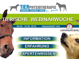 Webinar: Hundephysiotherapie (Dr. Kirsten Häusler)