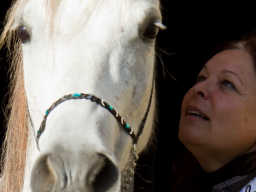 Webinar: Info- & Erlebniswebinar HorseTalk - Die Welt mit den Sinnen der Pferde wahrnehmen