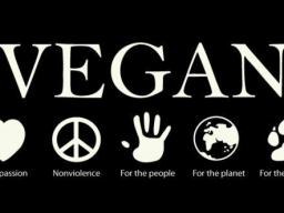 Webinar: Vegan mit Plan