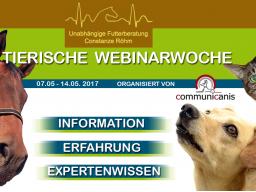 Webinar: Kotwasser bei Pferden  (Constanze Röhm)