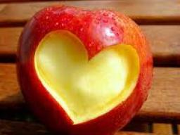Webinar: Webinar  Herz Kreislauf System