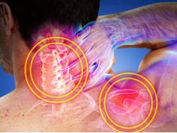 Webinar: Schmerzen Schulter / Nacken Ursachen Lösungen